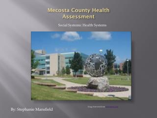 Mecosta County Health Assessment