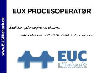 EUClillebaelt.dk