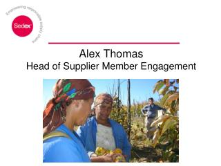 Alex Thomas Head of Supplier Member Engagement