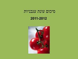 סיכום עונת עגבניו ת