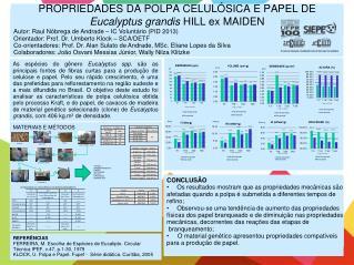 PROPRIEDADES DA POLPA CELULÓSICA E PAPEL DE  Eucalyptus grandis  HILL ex MAIDEN