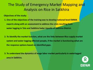 The Study of Emergency Market Mapping and Analysis on Rice in Satkhira