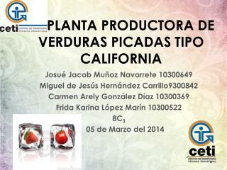 PLANTA PRODUCTORA DE VERDURAS PICADAS TIPO CALIFORNIA