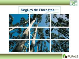Seguro de Florestas