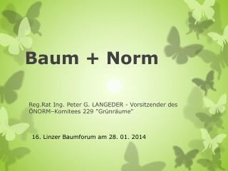 Baum +  Norm