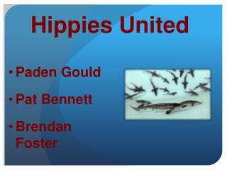 Hippies  U nited