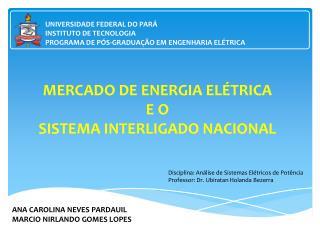 MERCADO DE ENERGIA ELÉTRICA E O SISTEMA INTERLIGADO NACIONAL