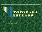 Tocobaga Indians