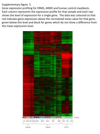 Supplementary figure  3  Gene expression profiling for ERMS, ARMS and  human control myoblasts.