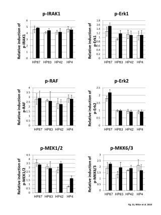Fig. S1;  Ritter et al.  2010