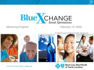 Mentoring Program                                            February 12, 2009