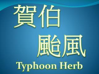 賀伯     颱風 Typhoon Herb