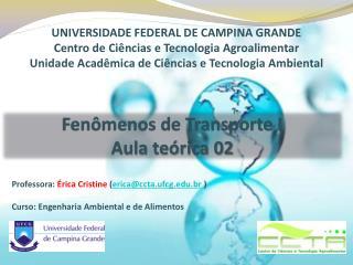 Professora:  Érica  Cristine ( erica@ccta.ufcg.br  )