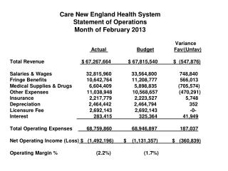 Care New England Health System Statement of Operations Month of February 2013