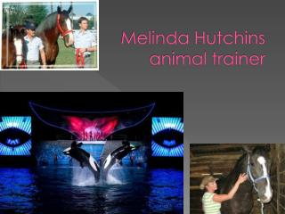 Melinda Hutchins  animal trainer