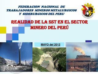 FEDERACION  NACIONAL  DE TRABAJADORES  MINEROS METALURGICOS  Y  SIDERURGICOS DEL PERU