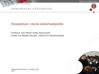 Perspektiver i dansk sikkerhedspolitik