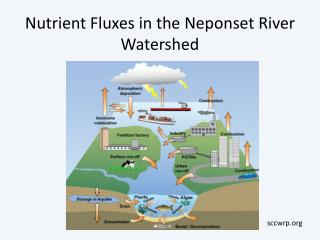 Nutrient Fluxes in the Neponset River Watershed
