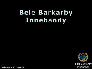Bele Barkarby Innebandy