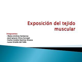 Exposición del tejido muscular