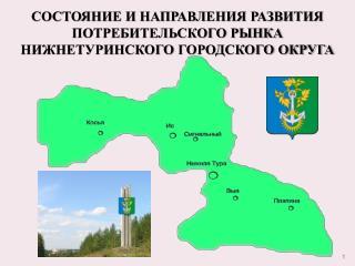 Состояние и направления развития потребительского рынка   нижнетуринского  Городского округа