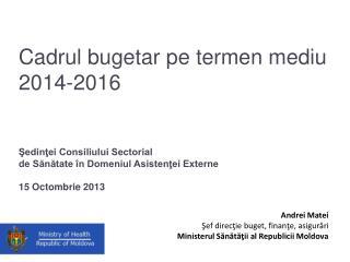 Andrei Matei Şef direcţie buget, finanţe, asigurări Ministerul Sănătăţii al Republicii Moldova