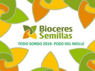TODO SORGO 2010- POZO DEL MOLLE