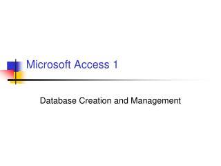 Microsoft Access 1