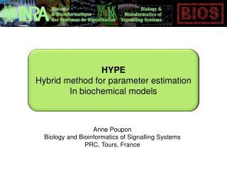 HYPE Hybrid method  for  parameter  estimation In  biochemical models