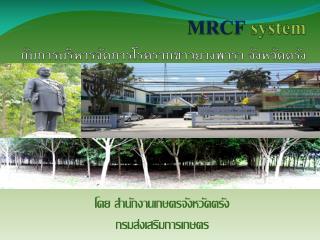 MRCF system กับการบริหารจัดการโรครากขาวยางพารา จังหวัดตรัง