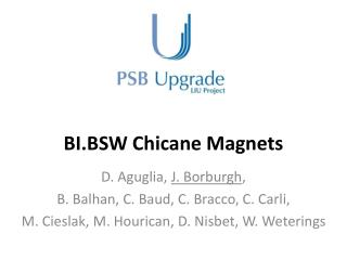 BI.BSW Chicane Magnets