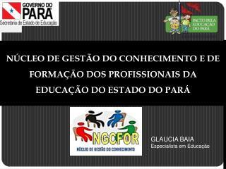 NÚCLEO DE GESTÃO DO CONHECIMENTO E DE FORMAÇÃO DOS PROFISSIONAIS DA EDUCAÇÃO DO ESTADO DO PARÁ