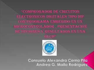 Consuelo Alexandra Cerna Pila Andrea G. Malla Rodríguez