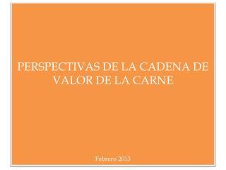 PERSPECTIVAS DE LA CADENA DE VALOR DE LA CARNE Febrero 2013