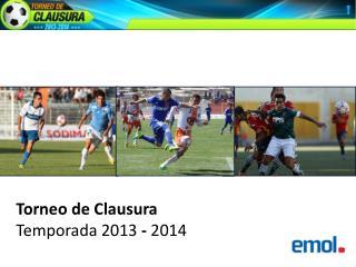 Torneo de Clausura  Temporada 2013  -  2014