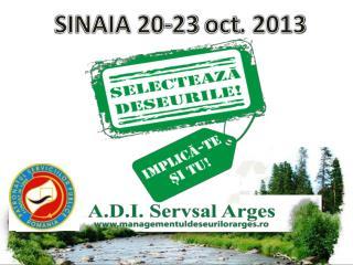 SINAIA 20-23  oct . 2013