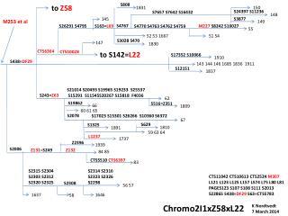 Chromo2I1xZ58xL22