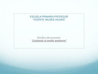"ESCUELA PRIMARIA PROFESOR  "" VICENTE VALDES VALDES"""
