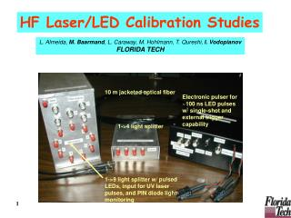 HF Laser/LED Calibration Studies