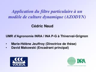 Application du filtre particulaire à un modèle de culture dynamique (AZODYN)