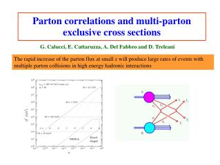 Parton correlations and multi-parton exclusive cross sections