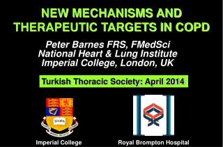 NEW MECHANISMS AND THERAPEUTIC TARGETS IN COPD