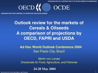 Ad Hoc World Outlook Conference 2004 Sao Paolo City, Brazil Martin von Lampe