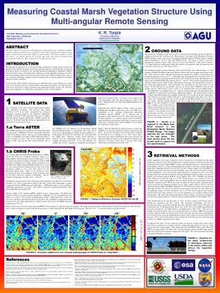 Measuring Coastal Marsh Vegetation Structure Using Multi-angular Remote Sensing