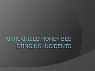 Africanized Honey bee stinging incidents