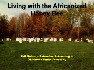 Phil Mulder – Extension Entomologist Oklahoma State University