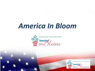 America In Bloom
