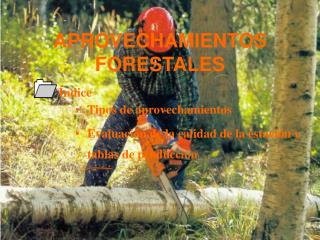 APROVECHAMIENTOS FORESTALES