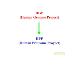 HGP (Human Genome Project) HPP (Human Proteome Proyect)