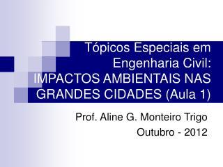 Tópicos Especiais em Engenharia Civil: IMPACTOS AMBIENTAIS NAS GRANDES CIDADES (Aula 1)